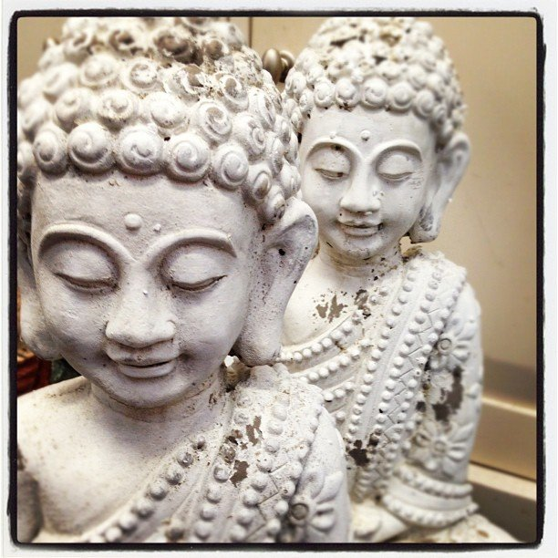 Sweet new #buddha just in! Time to #redecorate #soulscape again! #encinitas