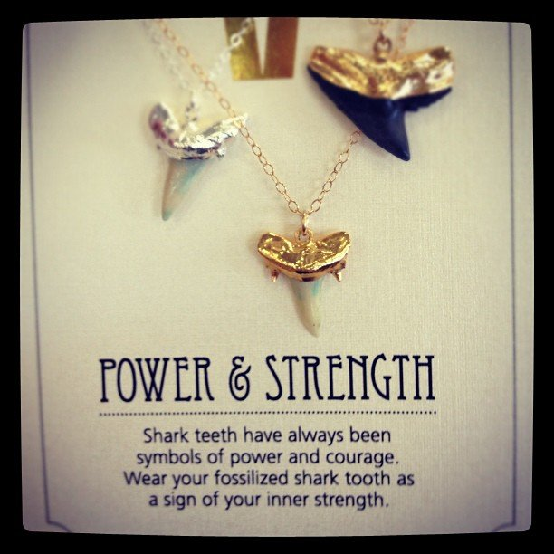 Who doesn't need a little #power and #strength #sharktooth #Soulscape #encinitas