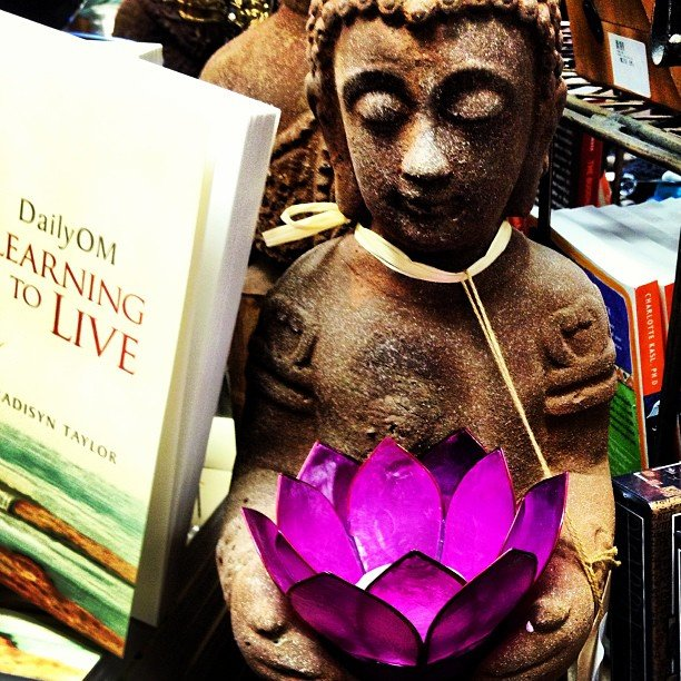 Bliss. #dailyom #buddha #lotus #encinitas #soulscapelife