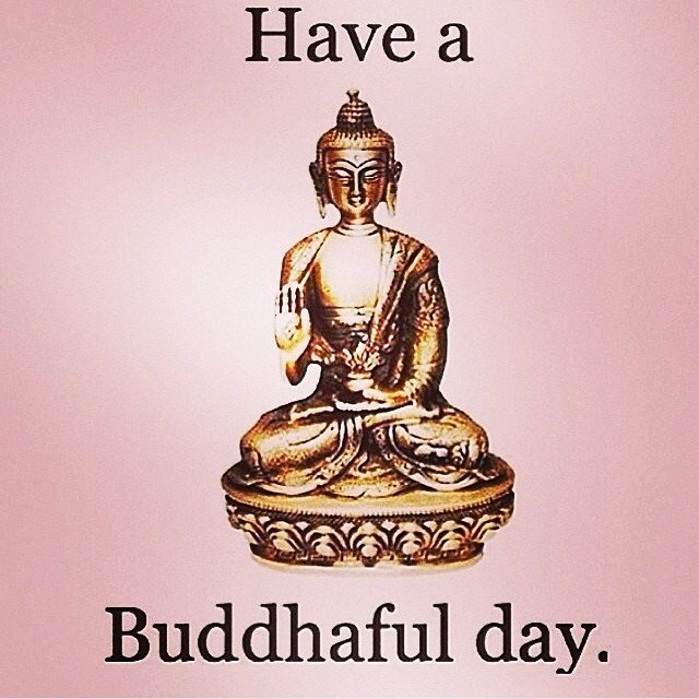 ️Have a buddhaful day ️