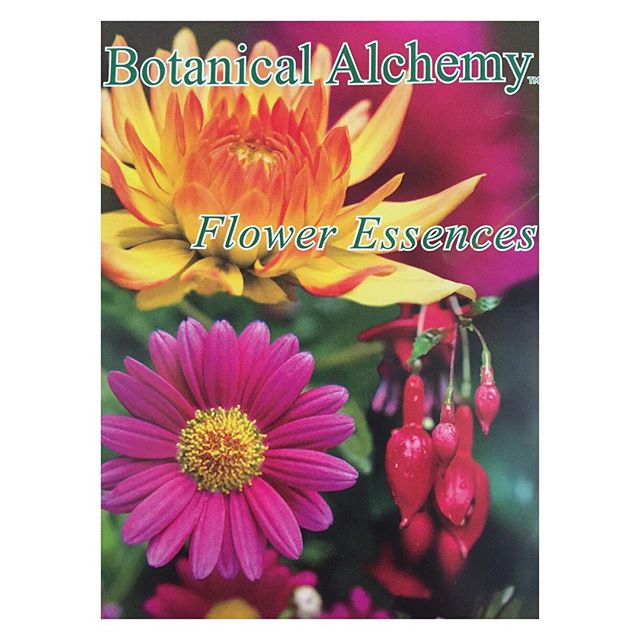 Don't forget about the #free #botanicalalchemy class tonight at 6:30!! All attendees will receive a free flower essence of their choosing!