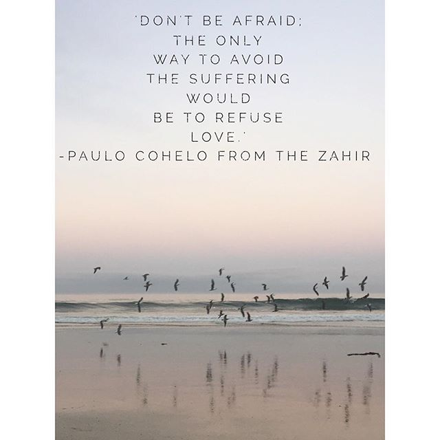 #fridayfeels embrace love. #paulocoelho #thezahir #love #wisdom #beauty #honor